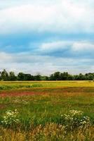 paisagem colorida do verão