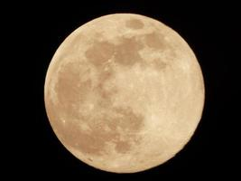 close-up de uma lua amarela foto