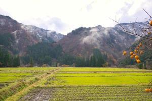 gokayama japão, abundante em recursos naturais, cultura e patrimônio