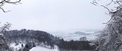 vista de uma paisagem de inverno foto