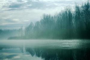lago enevoado com árvores foto