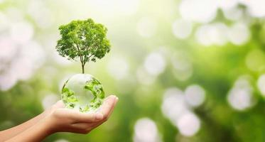 mão segurando globo e árvore