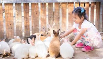 garotinha alimentando coelhos