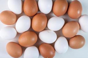 ovos frescos de perto