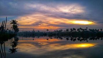 palmeiras ao pôr do sol
