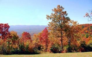 paisagem de outono vibrante foto