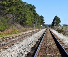 trilhos de trem perto da floresta foto