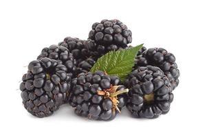 fruta amora