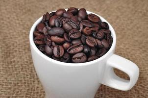 grão de café na xícara foto