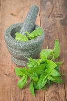 hortelã verde fresca em argamassa foto