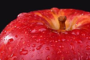maçã vermelha molhada. macro cai na maçã