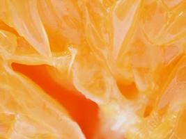 tangerina em fundo branco foto