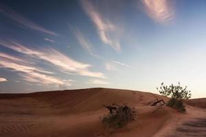deserto de dubai com belas sandunes foto