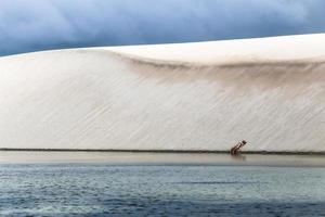 parque nacional lencois maranhenses