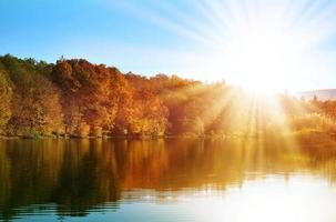 floresta de outono na margem do lago foto