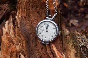 relógio vintage em toco de madeira na floresta