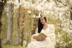 vestido de noiva em árvore vintage da floresta foto