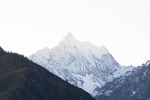 montanha com neve e floresta de pinheiros