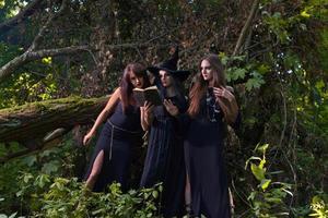 três bruxas na floresta