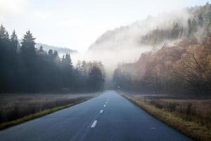 estrada enevoada