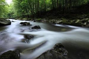 Die Schwarza im Thüringer Wald foto