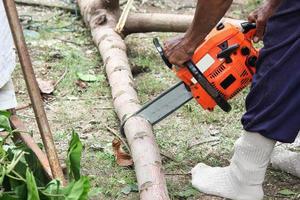 lenhador trabalhando na floresta foto