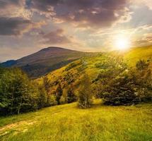 caminho pela floresta nas montanhas ao pôr do sol