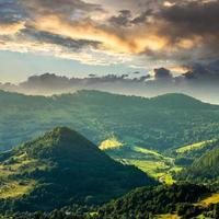 floresta de coníferas em uma encosta de montanha ao nascer do sol foto