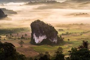 nevoeiro matinal sobre o solo.