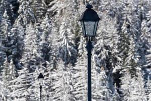 postes de luz em uma paisagem fria de inverno foto