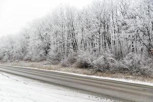 paisagem de inverno, floresta perto da estrada foto