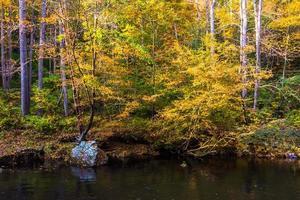 cor do outono ao longo do rio da pólvora no estado das cataratas da pólvora