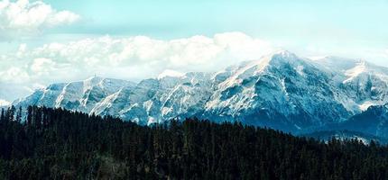 picos cobertos de neve sob céu nublado atrás de uma floresta
