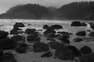nevoeiro e rochas em uma praia de oregon foto