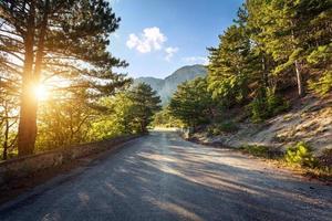 estrada de asfalto na floresta de verão ao pôr do sol. montanhas da criméia