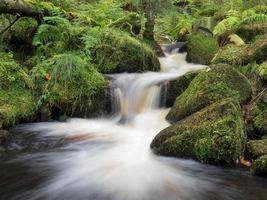Wyming Brook, Peak District, Reino Unido foto