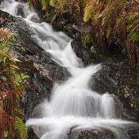 riacho fluindo