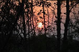 pôr do sol transando à noite foto