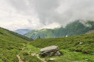 trilha de caminhada entre vale alpino verde foto
