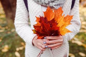 folhas nas mãos