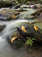 paisagem de cachoeira tad ton na tailândia foto