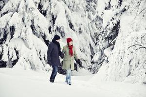 homem mulher caminhar árvores de inverno foto