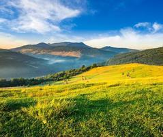 montes de feno em campo agrícola na colina da montanha foto