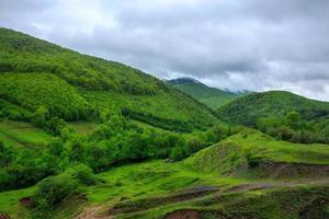 árvores perto do vale nas montanhas na encosta foto