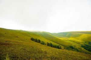 verão nas montanhas. cárpato, ucrânia, europa.