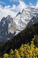 pico da montanha e floresta de pinheiros, reserva de nível nacional yading, da