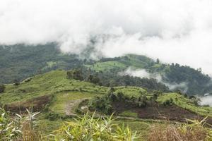 nevoeiro e nuvem no vale de phu tub berk
