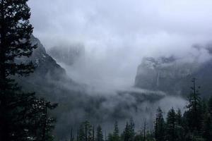 delícia de Yosemite