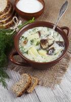 sopa de cogumelo foto