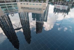 reflexo de pretonas foto